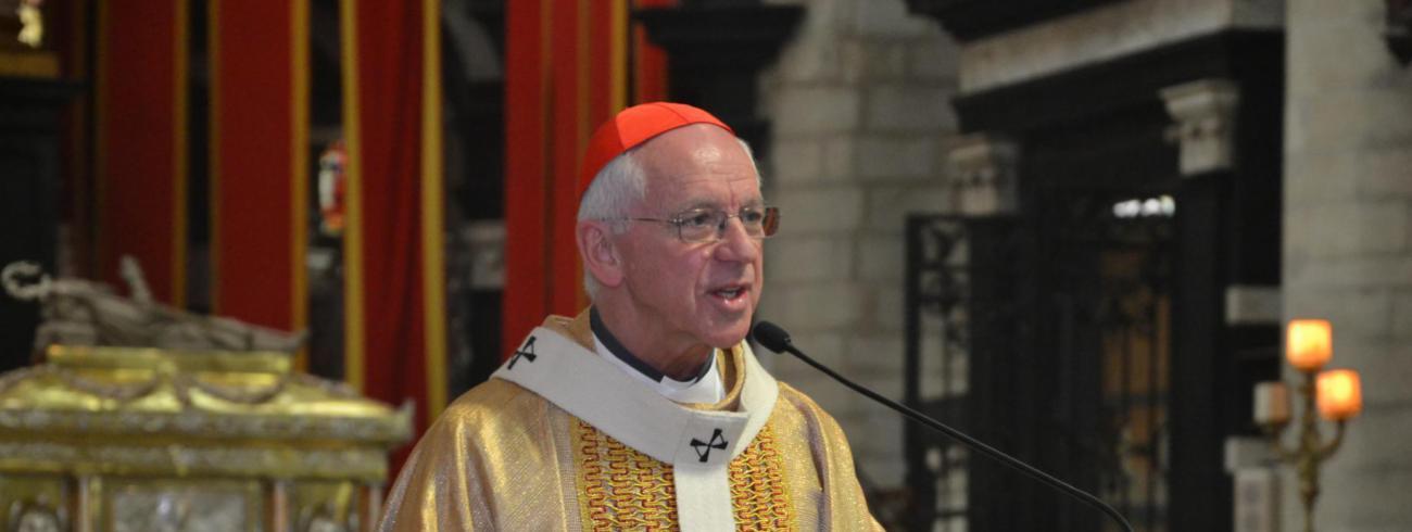 Kardinaal Jozef De Kesel © Persdienst aartsbisdom