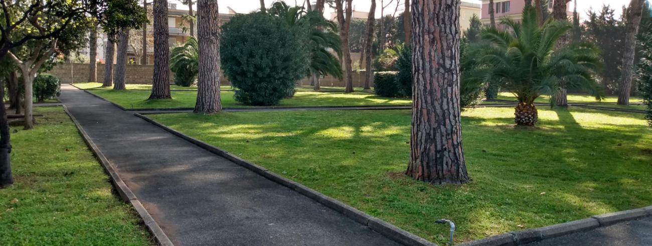 Dit is de tuin van het Belgisch College © Stijn Vanhee