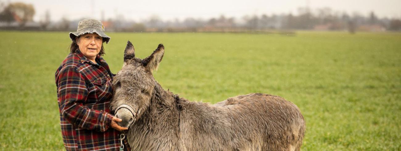 Jenny wandelde van Zwevegem naar Compostela met een ezel. © James Arthur