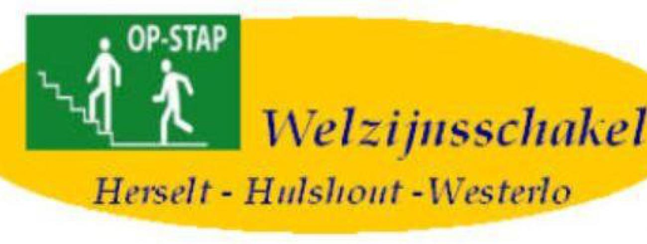 WZS Logo © WZS