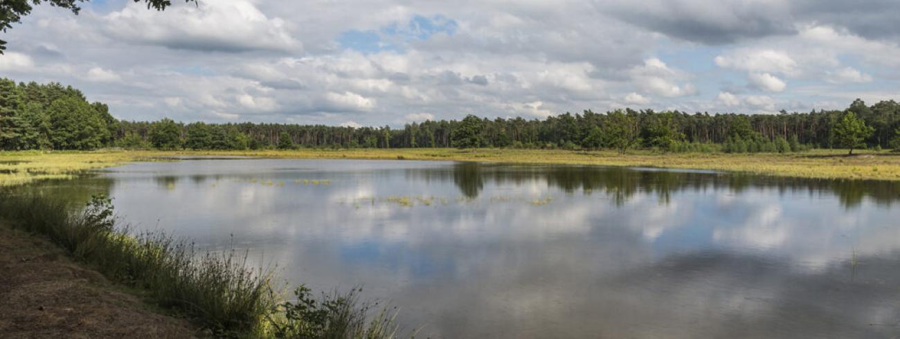 Het Landschapspark de Merode © demerodeonline.be