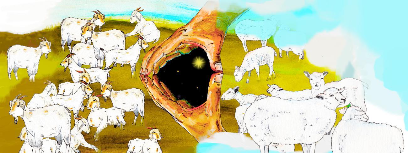 Bijbel van A tot Z: oordeel © Tynke van Schaik