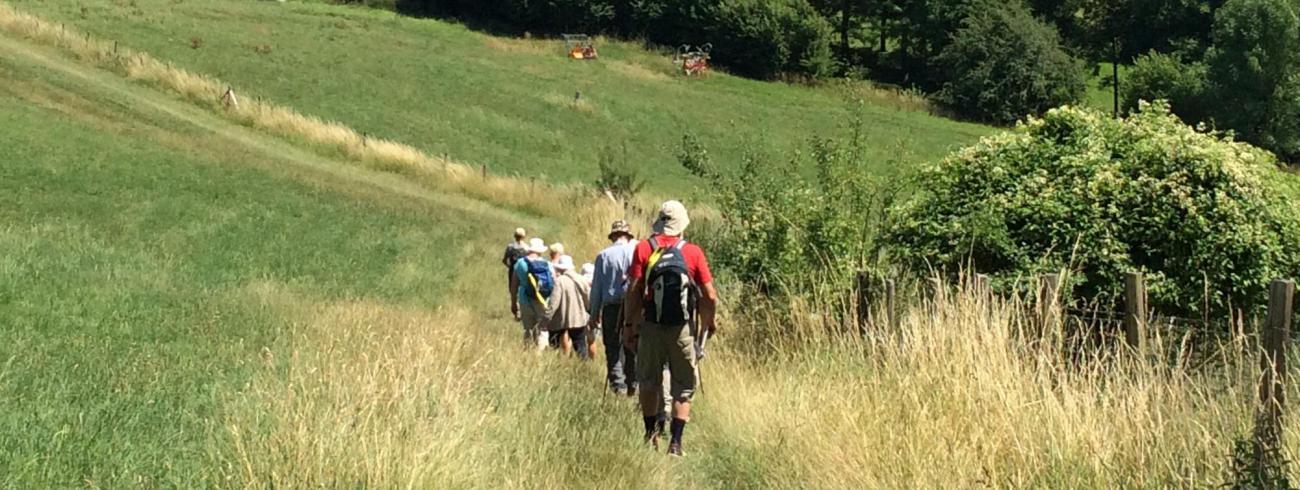 """Wandelbezinning """"de reis van je hoofd naar je hart"""" ©  Diocesane werkgroep pelgrimspastoraal"""
