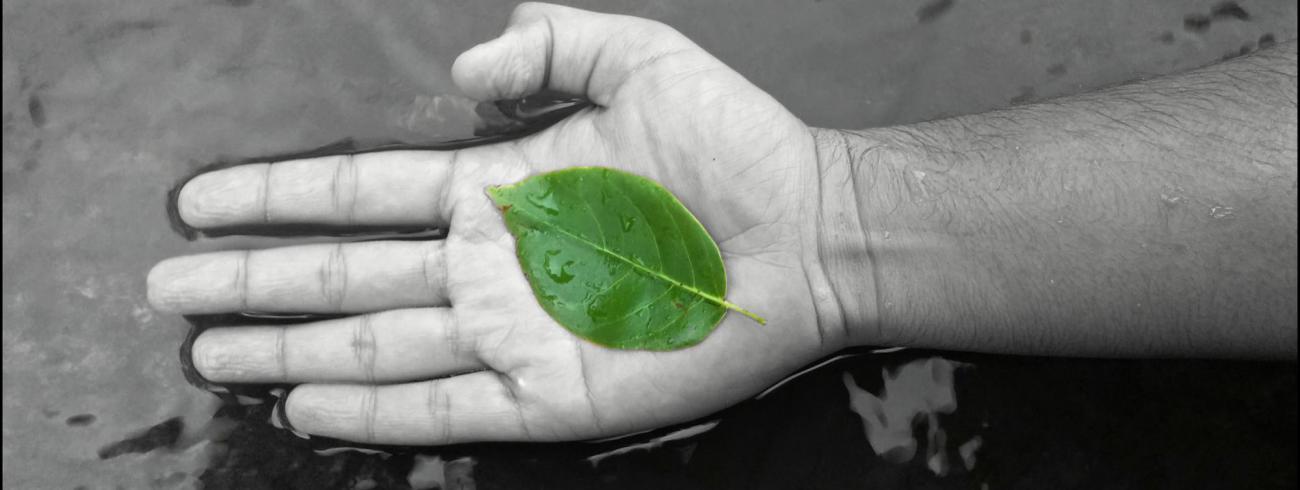 De aarde in onze handen © Kenzshah 1993, Wikimedia Commons