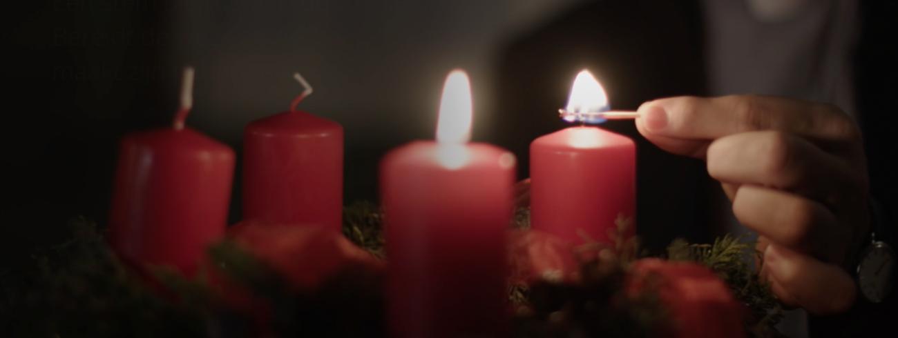 Bisschop Johan Bonny: Het gaat over jou