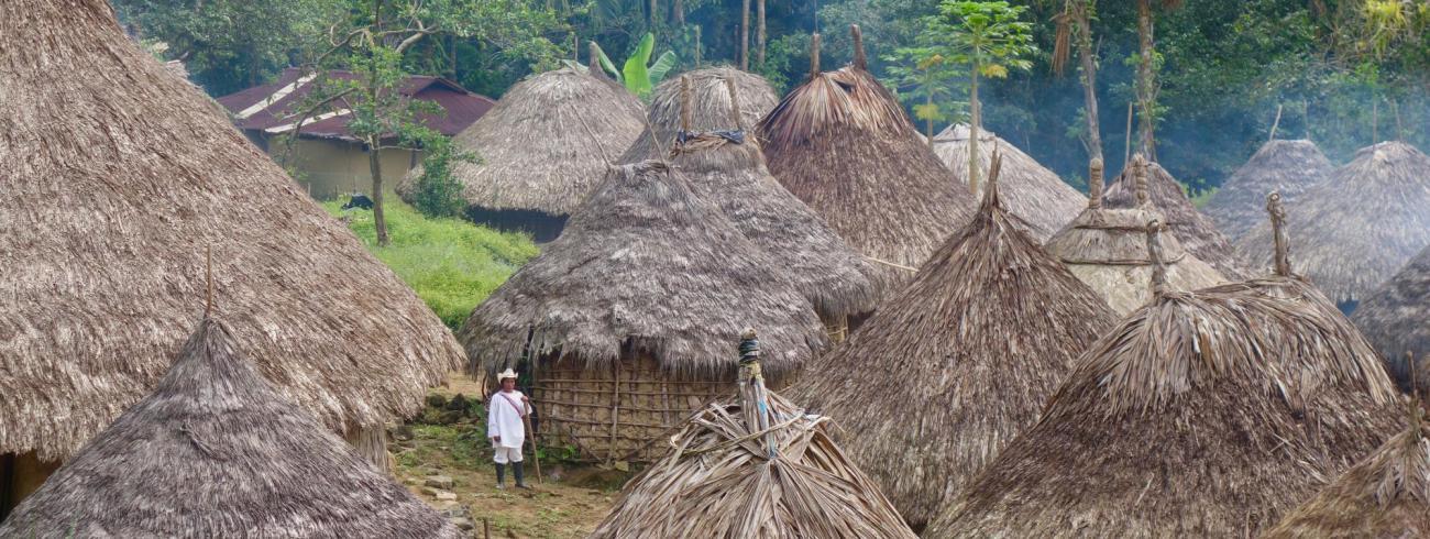 Bewoning in het regenwoud, Peru. © Sébastien Goldberg / Unsplash