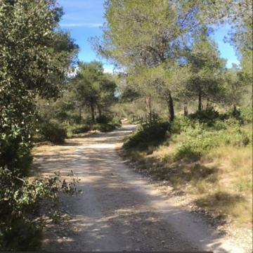 De eenzaamheid in de norbertijnenabdij in de Provence werd Christophe Monsieur bijna teveel. © Schermafbeelding uit video 'Wandeling met een hond'