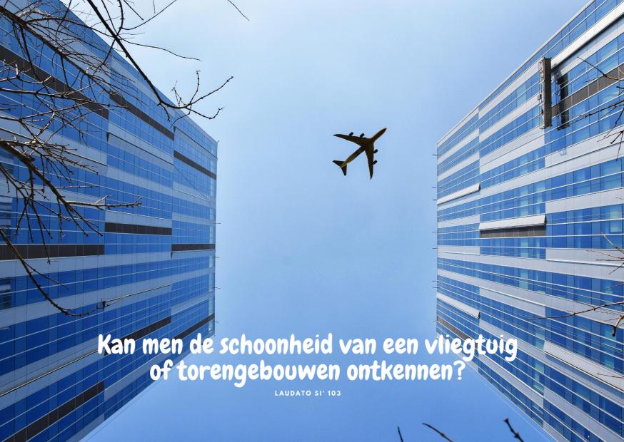 Laudato Si' - maand van de Schepping - dag 3 © Vicariaat Brussel, foto: Pixabay