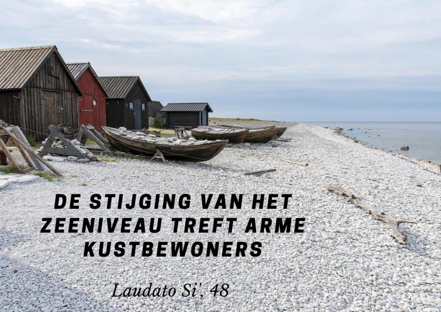 Laudato Si' - maand van de Schepping - dag 4 © Vicariaat Brussel, foto: Pixabay
