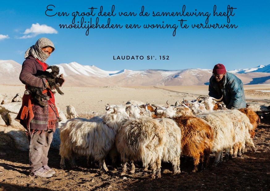 Laudato Si' - maand van de Schepping - dag 8 © Vicariaat brussel - Pixabay