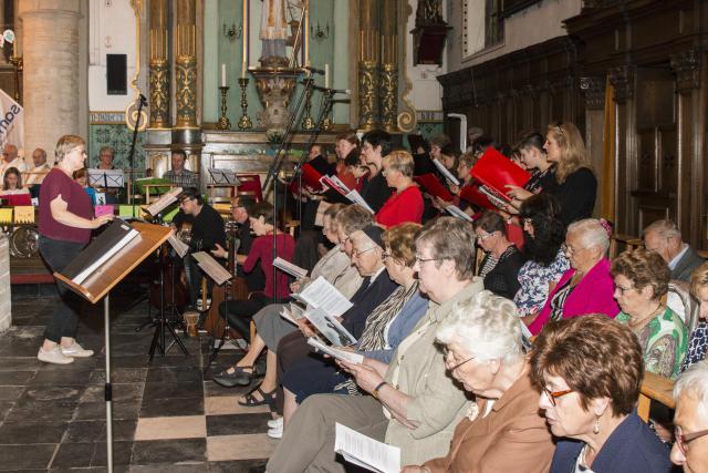 Vier koren en orkesten zorgden voor de muzikale noot in de viering © Frans Dhoore