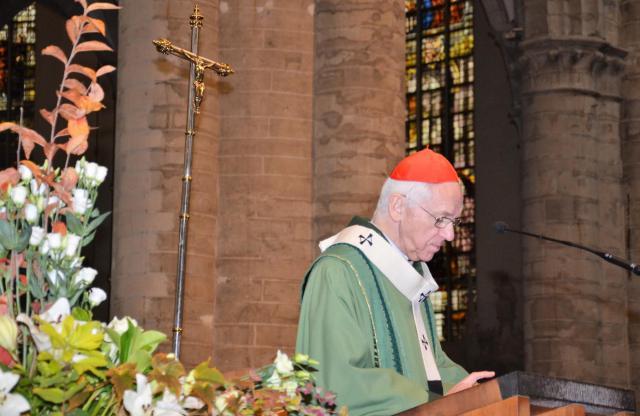 Kardinaal Jozef De Kesel tijdens de eucharistieviering voor de vrede op zondag 11 november 2018 © Hellen Mardaga
