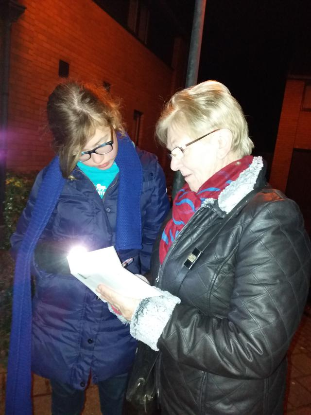 Lichtjestocht Zoerle 2017
