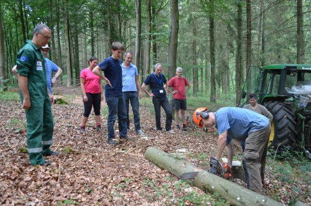 Werken in het bos met frère Xavier © CCV Gezinvolgeloven Orval 2019, foto: Anja Opsomer