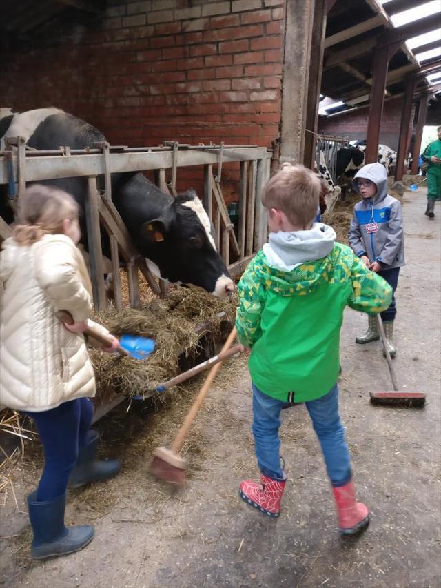 Stallen reinigen op de boerderij! © schoolarchief