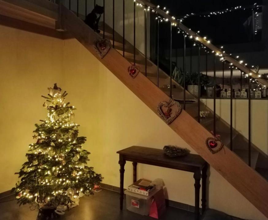 Uitkijken naar Kerst