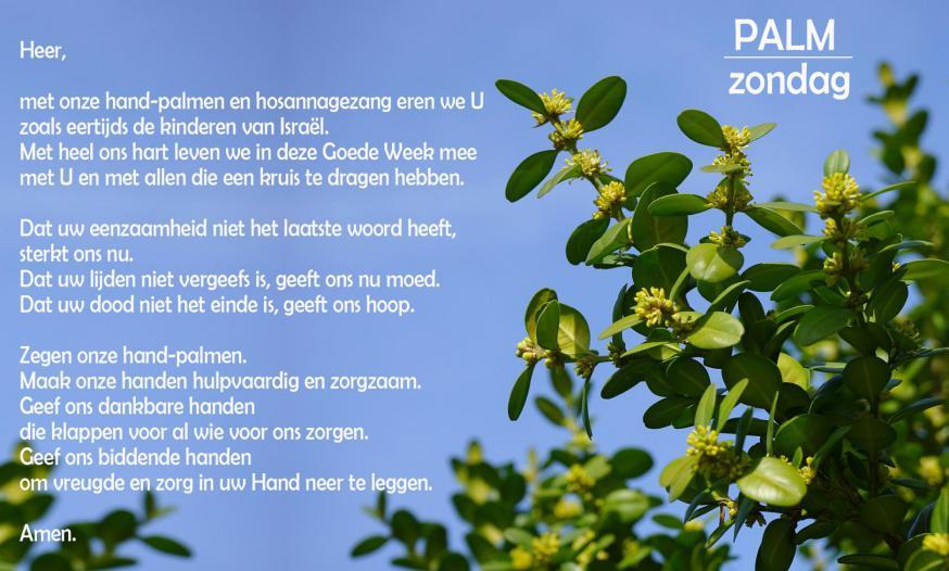 Palmkaartje CCV © CCV