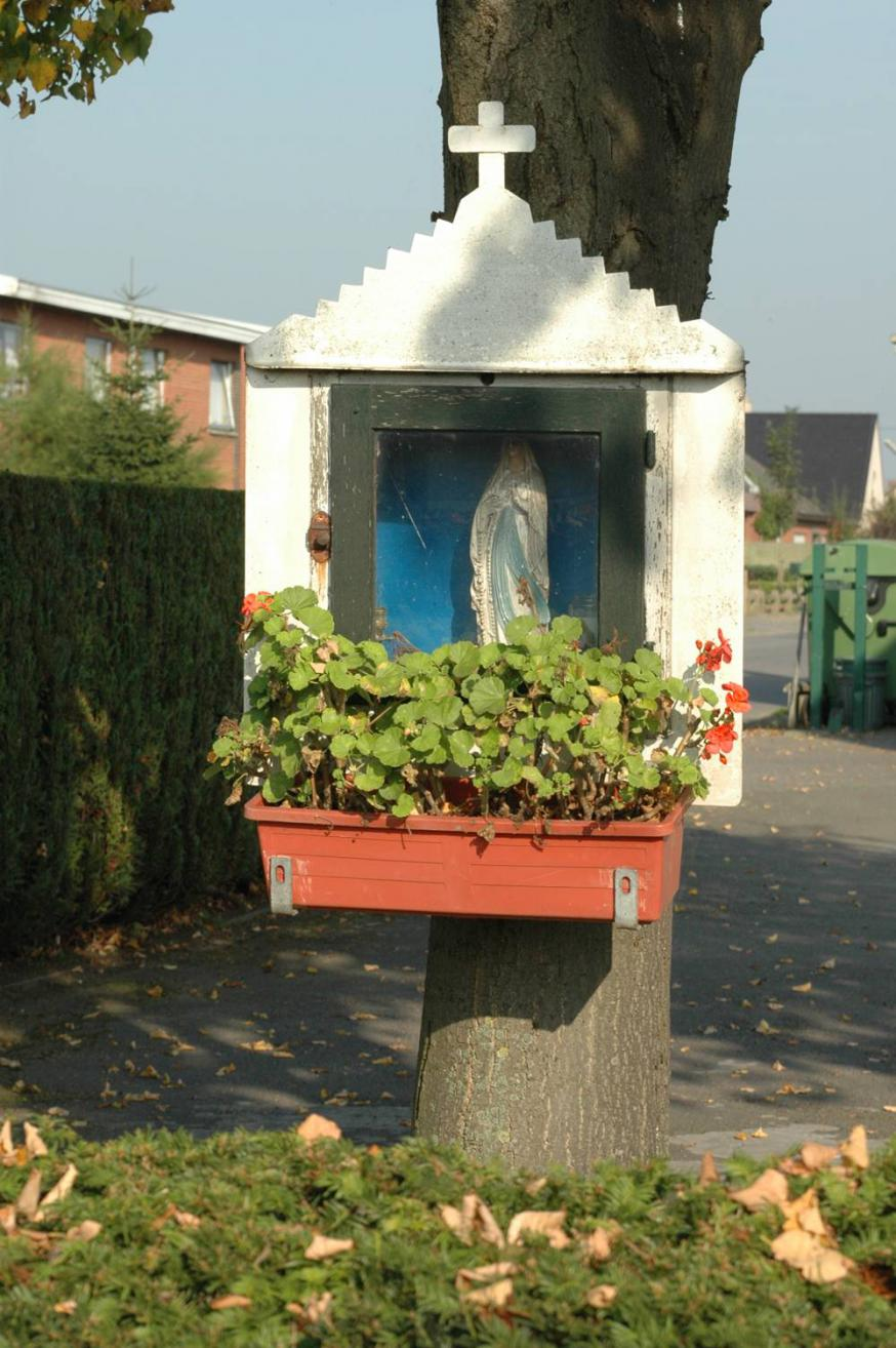 Op de hoek van Ruilare en Slagmanstraat in Zeveneken © PM