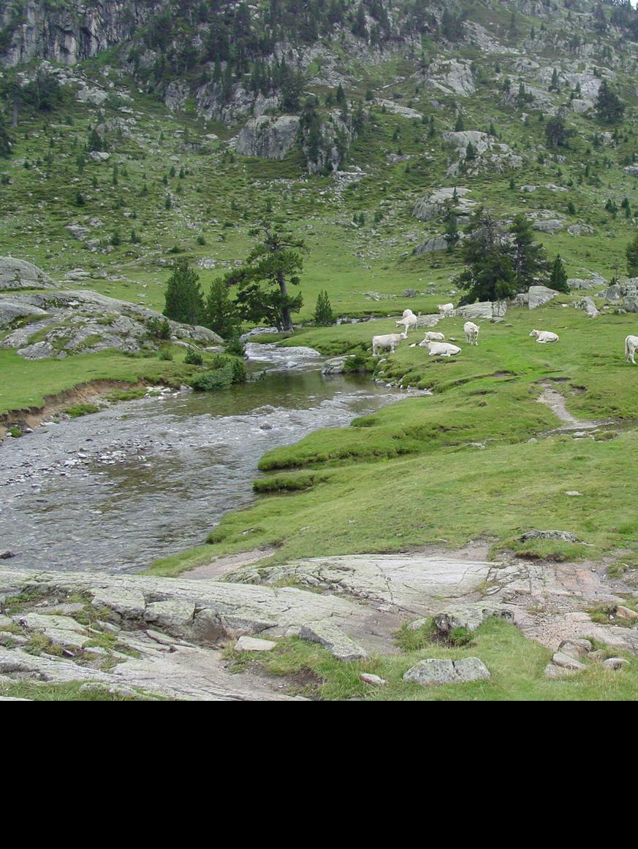 Lourdes ligt in de prachtige groene omgeving van de Hautes-Pyrénées.