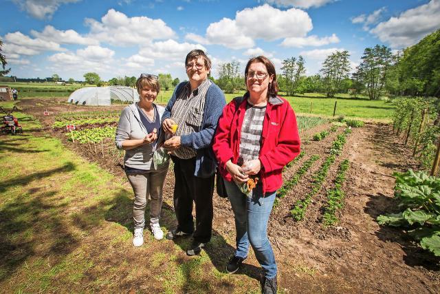 Vrijwilligers en mensen in armoede met groene vingers delen onder meer het project Samen Tuinen. © vzw De toevlucht