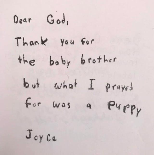 Lieve God, dank je voor mijn babybroertje, maar eigenlijk had ik gebeden om een hondje. © Bored Panda