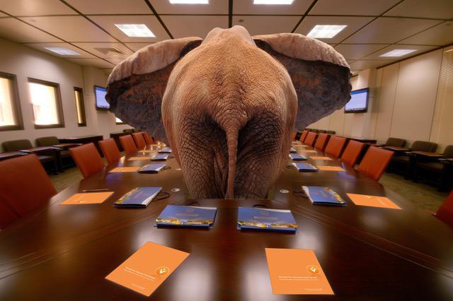 Een belangrijk deel van het kwaliteitsverlies in het Vlaamse onderwijs is niet ontstaan bij gebrek aan eindtermen, maar met de toepassing ervan; dàt is de olifant in de kamer  © RR