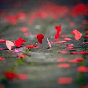 Sint-Valentijn vieren © Canva