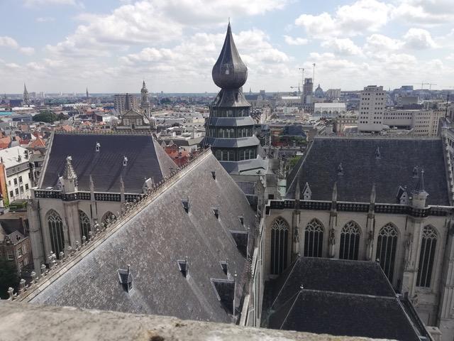 Vier windstreken: een blik op Antwerpen vanop de kathedraaltoren © bisdom Antwerpen