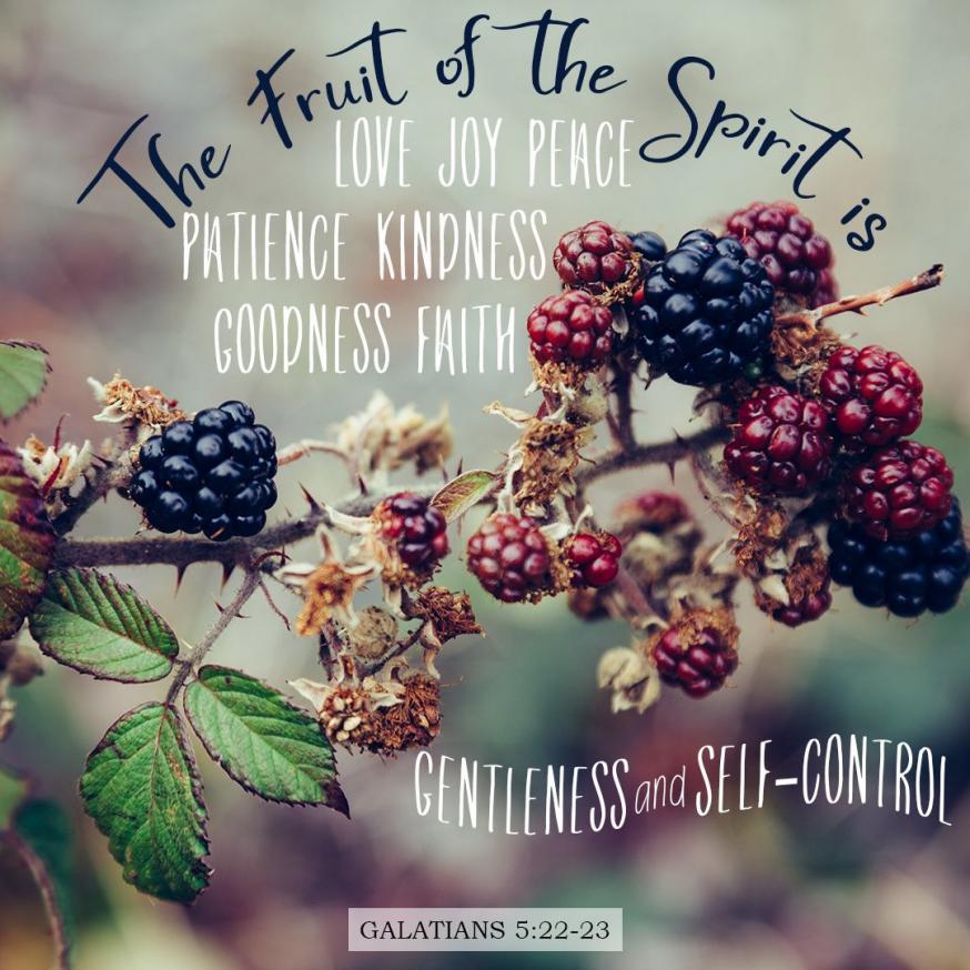 Vruchten van de Geest 6