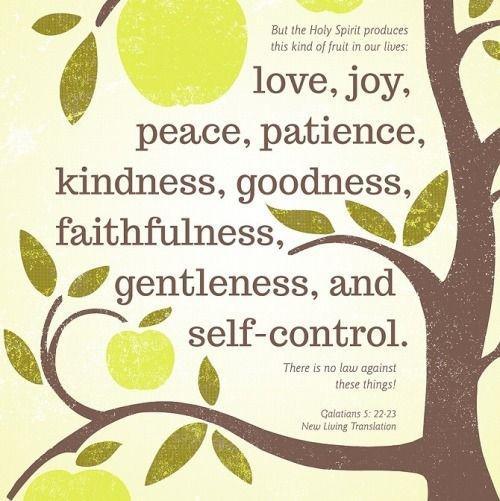 Vruchten van de Geest 8
