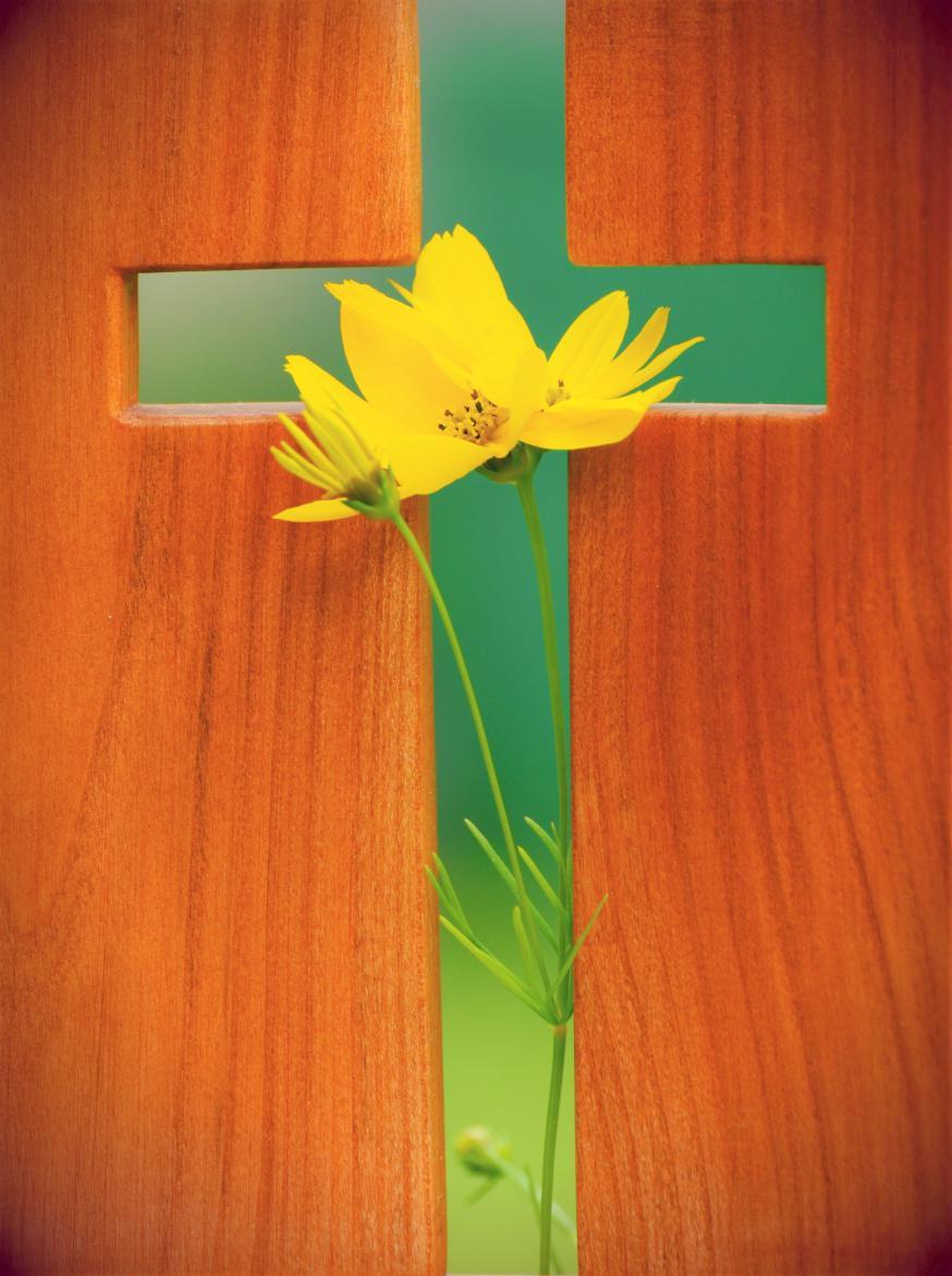 Doorheen zonde, lijden en dood, opent God steeds weer nieuwe toekomst.