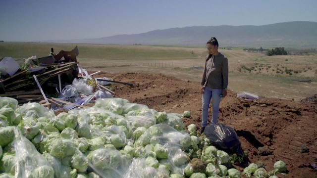 Elke dag opnieuw belanden tonnen en tonnen eetbaar voedsel op de vuilnisbelt.  © Freemantle Media