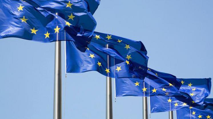 De vlag van de Europese Unie © EU
