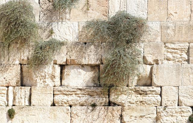 """""""Breekt deze tempel af en in drie dagen zal Ik hem doen herrijzen"""""""