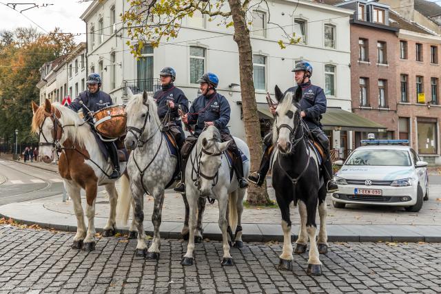 Sint-Hubertusviering met dierenzegening © Frans Verwerft