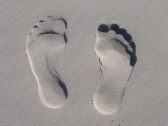 voetstappen © pixabay